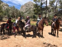 Activities with horses and ponies