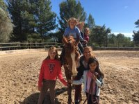 Enjoying the horses wit the young ones