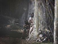 Emoción en el bosque