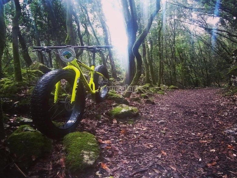 Ruta mountain bike por los caminos más espectaculares