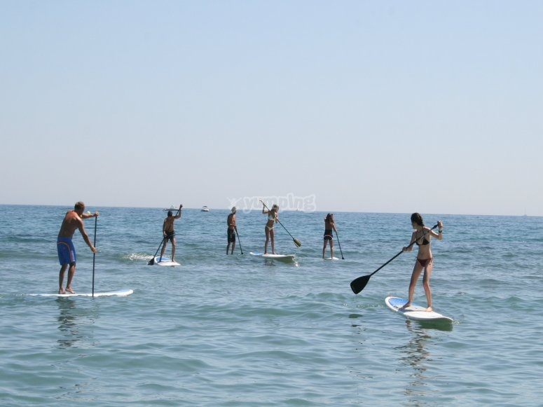 Paddle surf group