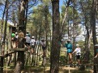 Actividad entre árboles