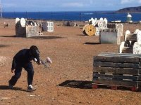 Escenario junto al mar
