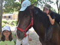 Horse with cap