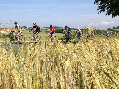 Terra Bike Tours