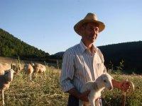 Ruta de pastoreo