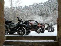 Buggys en la nieve