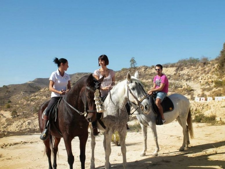 Prepared for the route by a horse in Alicante