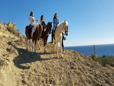 Horseback Riding and quads in Alicante