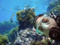Bautismo de Buceo VIP: Discover Scuba Diving