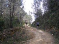 Rutas en bici por la montaña