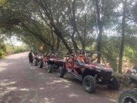 Recorriendo bosques de Mallorca en buggy