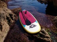 Paddle surf board on the rocks