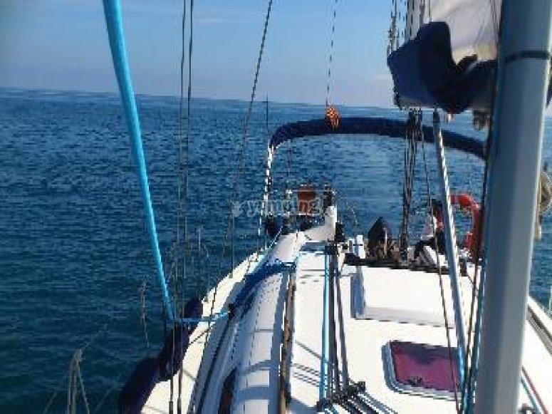 excursion velero.
