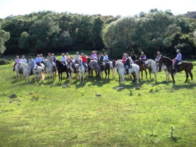 Horse ride in Castellar for 1h 30'