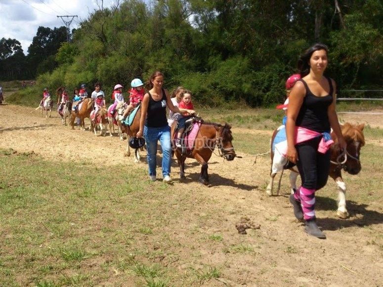 带着小马引导孩子