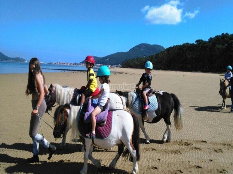 Ponys en la playa