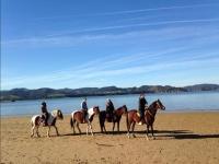 Excursion in the seashore