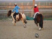 骑骑马课程