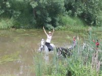 Excited on the horse in the water