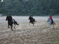 Exciting race on the beach with the horses