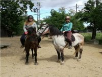Friends on horses