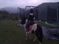 A caballo por el Parque
