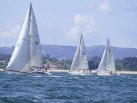 A variety of sailboats