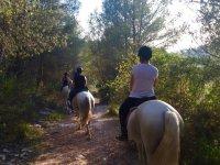 在森林里骑马