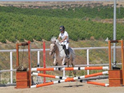 每月优惠券,骑马课程,PalmadelRío