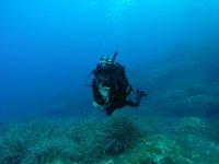Buceador suspendido bajo el agua