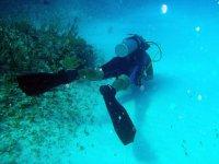 Examinando el fondo marino