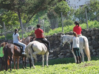 30 min horse ride tour in Gran Canaria