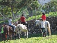 Excursión a caballo en Gran Canaria, media hora