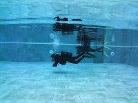 在池中潜水