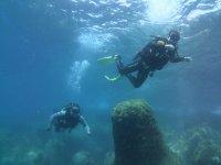 与工作中的潜水