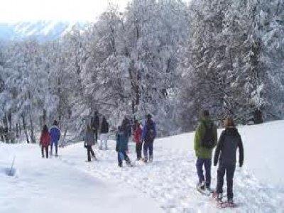 Europicos Raquetas de Nieve