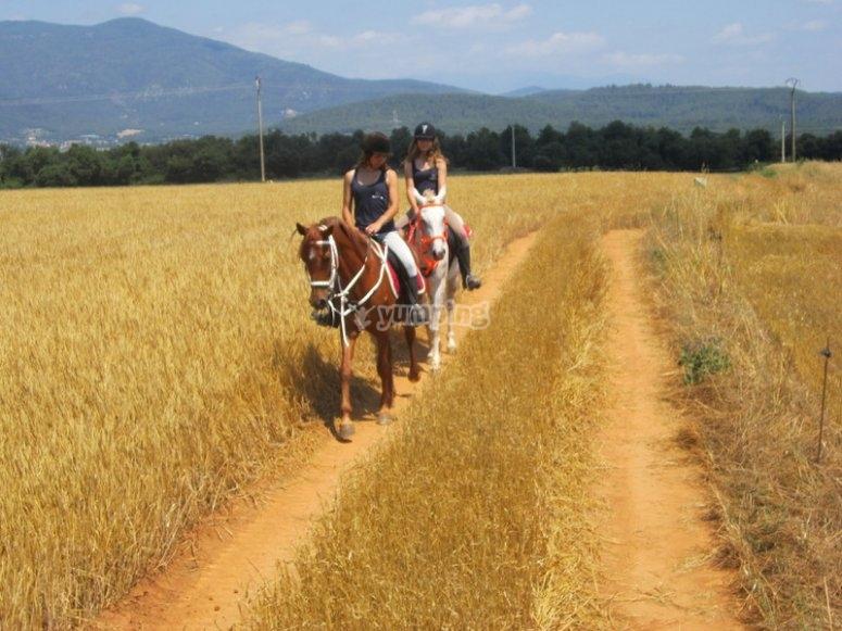 Paseo de iniciacion a caballo
