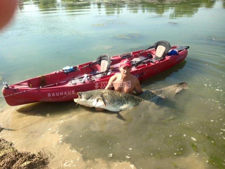 Pesca de siluro desde kayak
