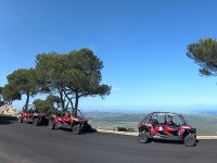 Buggies Polaris en Mallorca