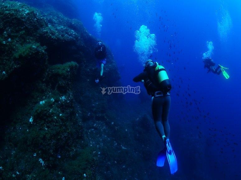 潜水时的潜水员