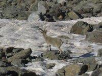 在格拉纳达自然公园和马拉加徒步旅行
