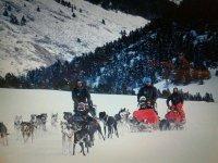 Trineo tirado por huskies en el Valle de Arán