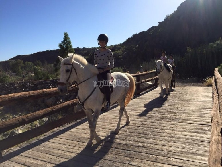 Crossing the bridge on horseback