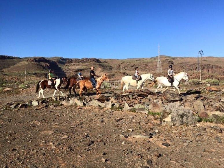 Horse riding in Gran Canaria