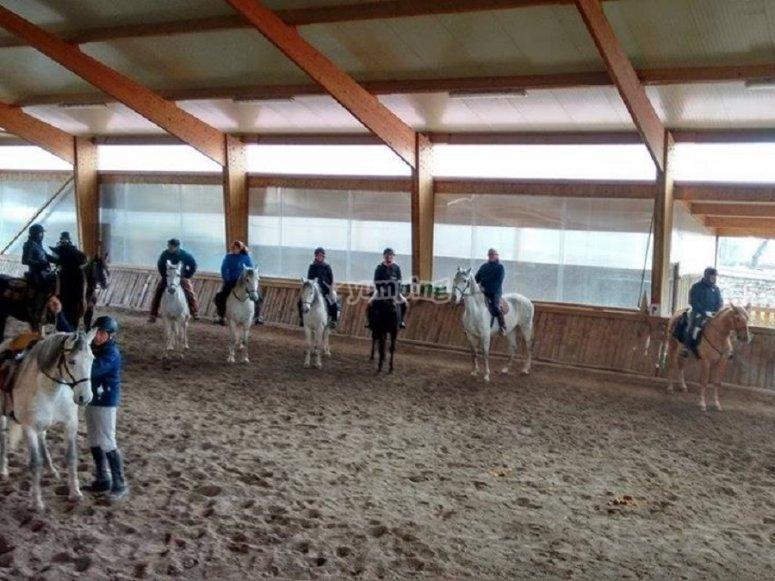 Sulla scuola di equitazione coperta