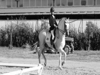 A rider and his horse in black and white