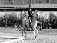 Una jinete y su caballo en blanco y negro