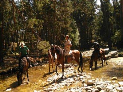 骑马在La Granja de San Ildefonso,1小时