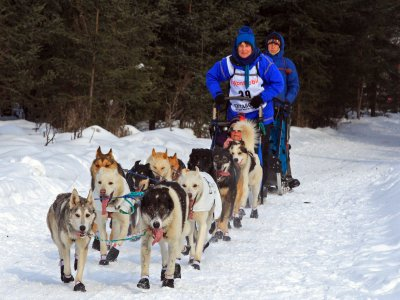 Route en mushing à Baqueira 3,5 km enfants